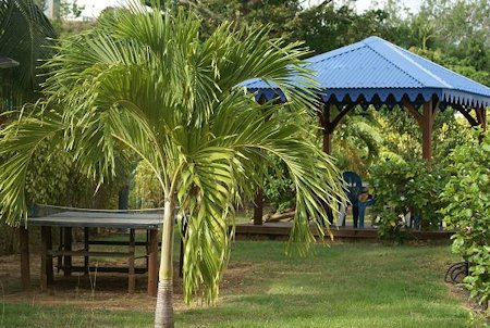 les_creolines_residence_martinique_martinica_006